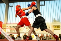 w900_sport_boxen_ren3084