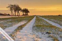 w900_fc_ges_winter09_ren3801_3_f